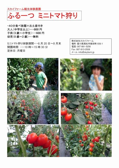 ふるーつ ミニトマト狩りチラシ① (1).jpg